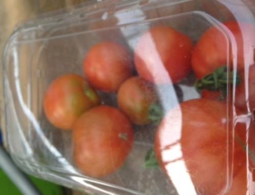 Tomato Containers